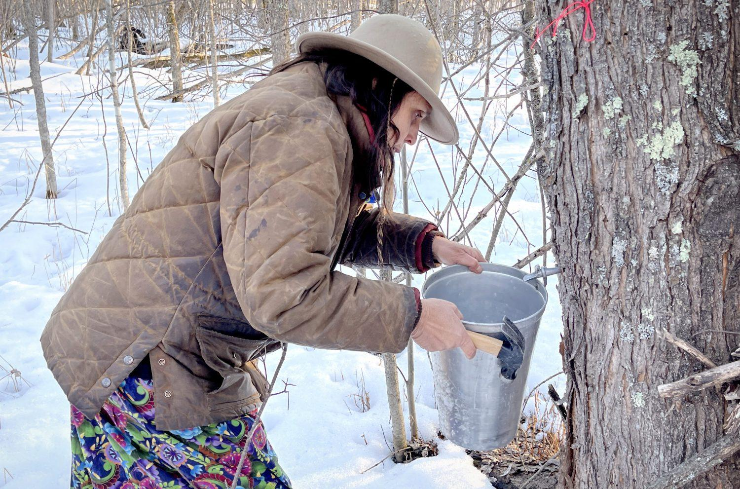 Winona LaDuke taps a maple tree near the Enbridge Line 3 pipeline during a ceremony in early March.