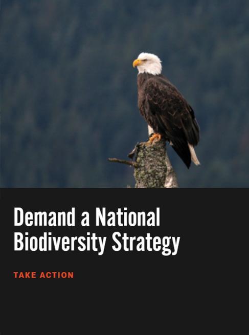 Take action to demand a national biodiversity plan.