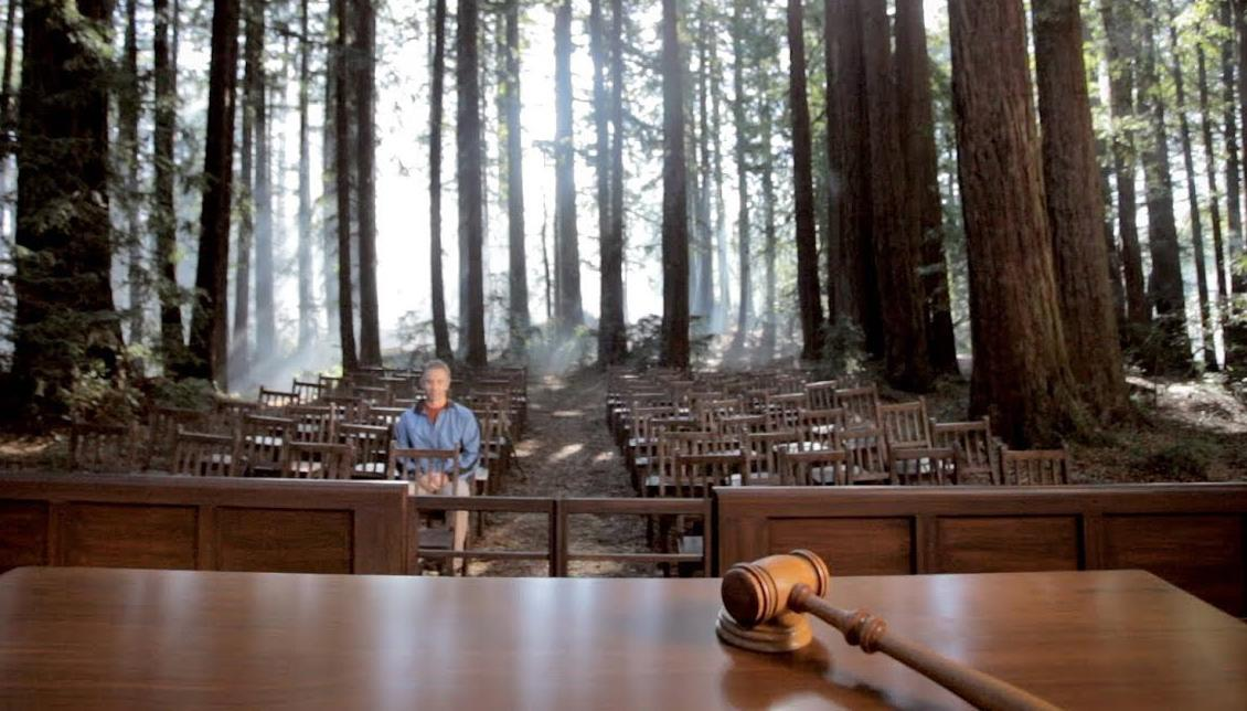 A hiker sits in a courtroom in the middle of a forest.